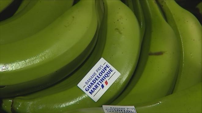 Решение Европарламента облегчило жизнь экспортерам бананов Мартиники