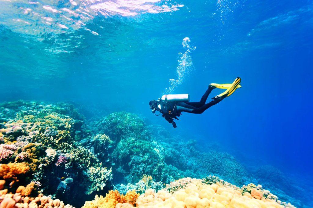 Активный отдых на Мартинике: спорт, дайвинг, каньонинг