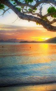 Отдых на Мартинике